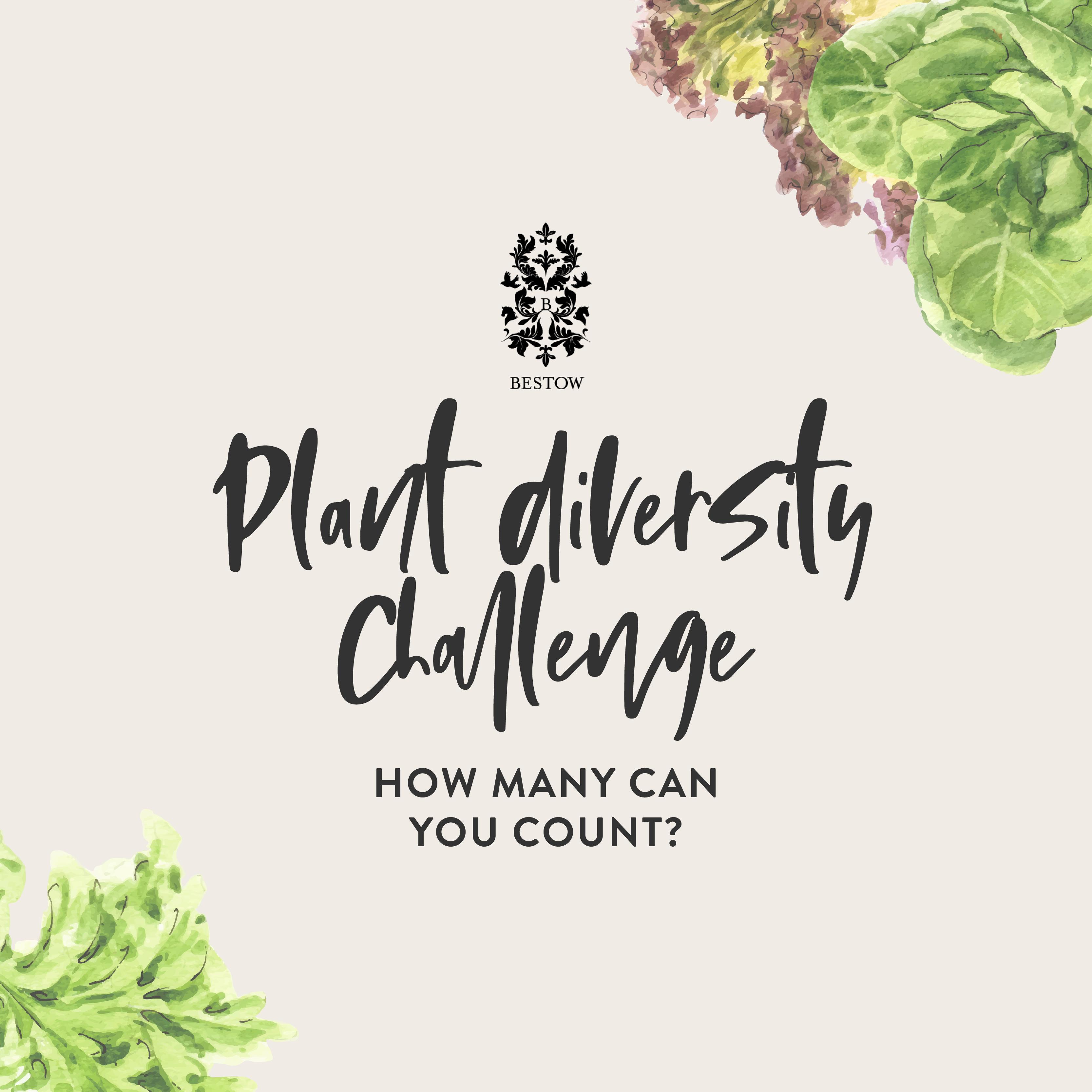 Plant Diversity Challenge - Header Small V.1